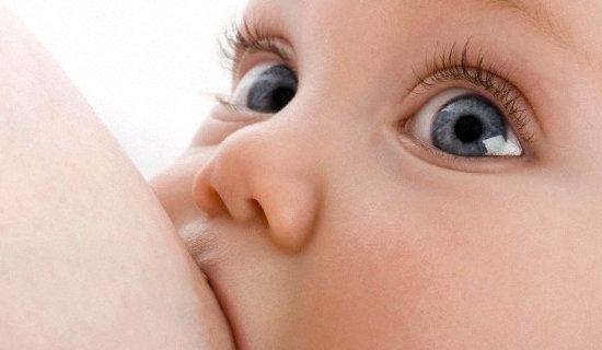 Photo de l'atelier Apéro-conférence : l'allaitement et le nourrisson